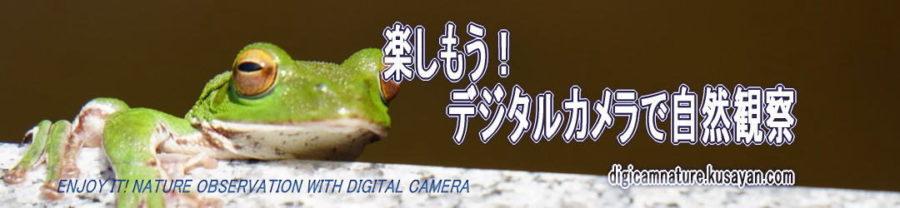楽しもう!デジタルカメラで自然観察